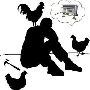 råd og vejledning til hønshusbyggeri